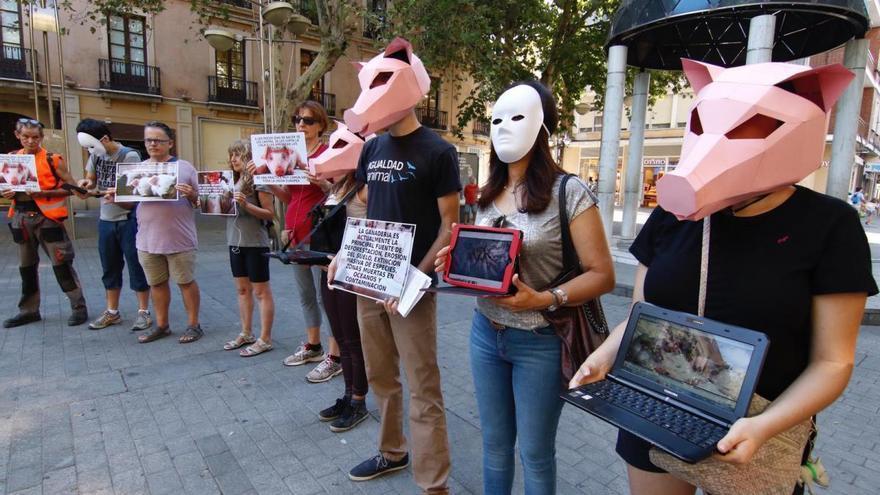 Una de las concentraciones celebradas en pasado sábado contra el macromatadero de Binéfar