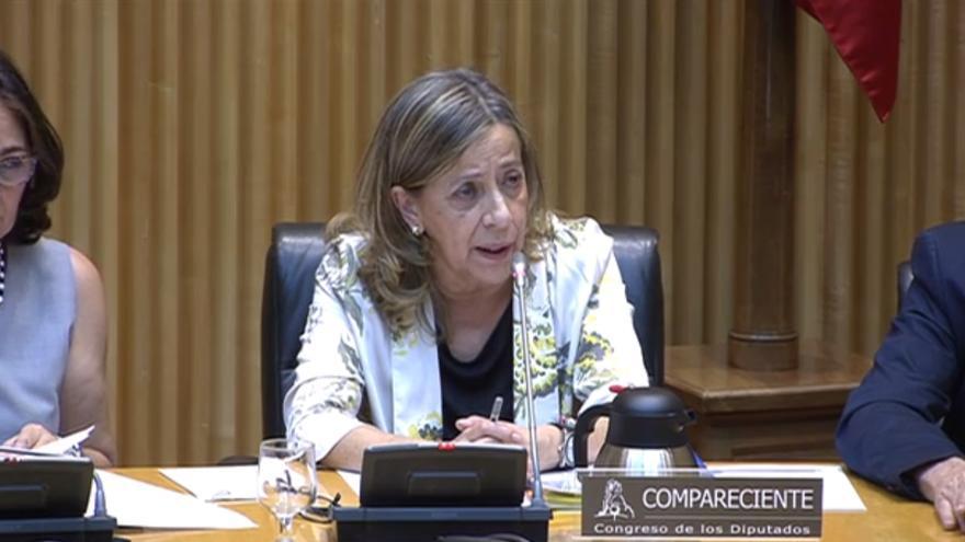 La tesorera del PP, Carmen Navarro, durante su comparecencia en el Congreso.