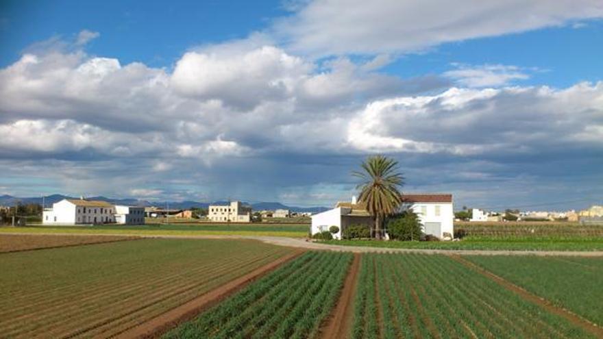 Una zona d´horta junt a València / @PoblesValABando