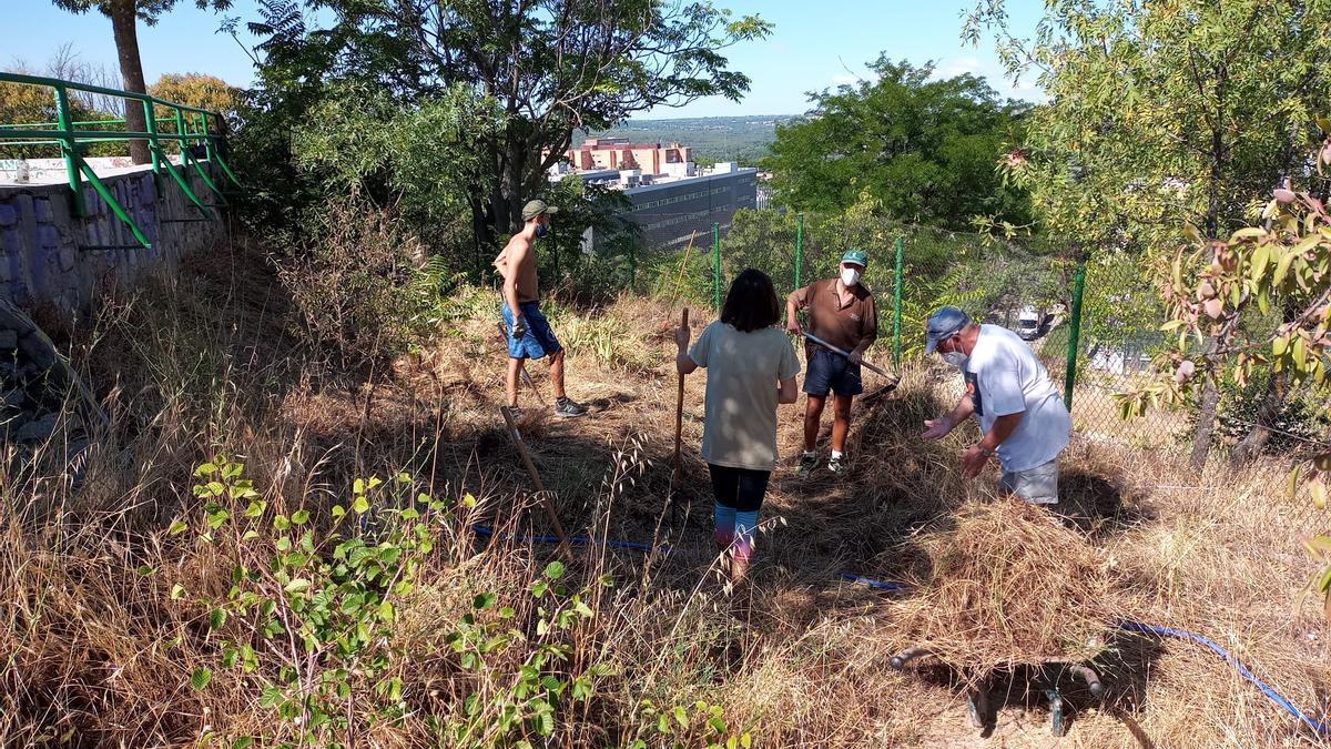 Vecinos limpiando de maleza el parque