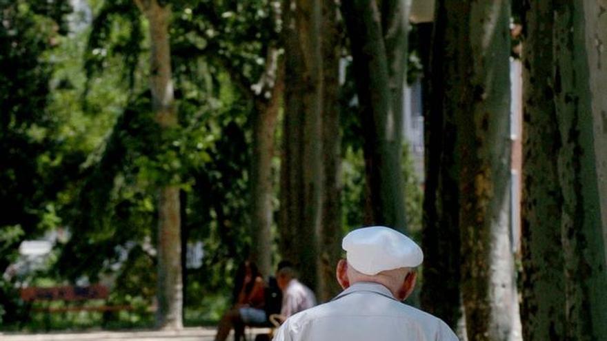 El Congreso pide al Gobierno crear un Plan de prevención del maltrato a mayores