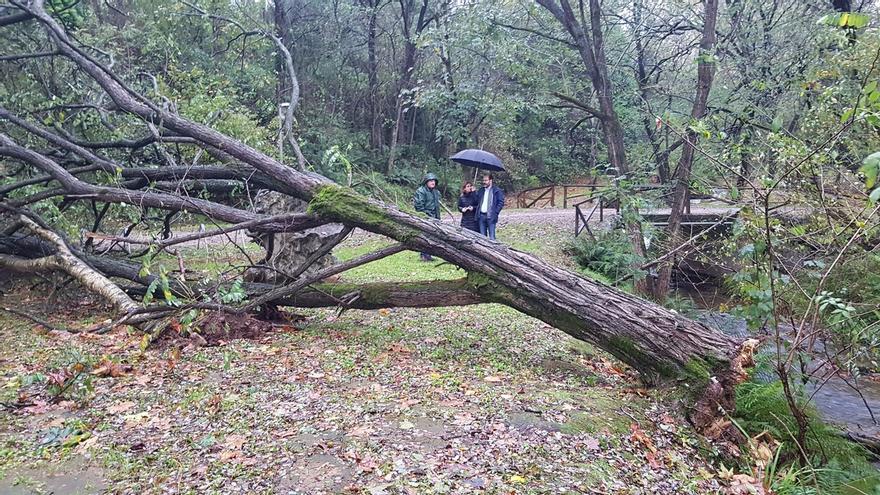 El Ayuntamiento trabaja para reparar los desperfectos del temporal