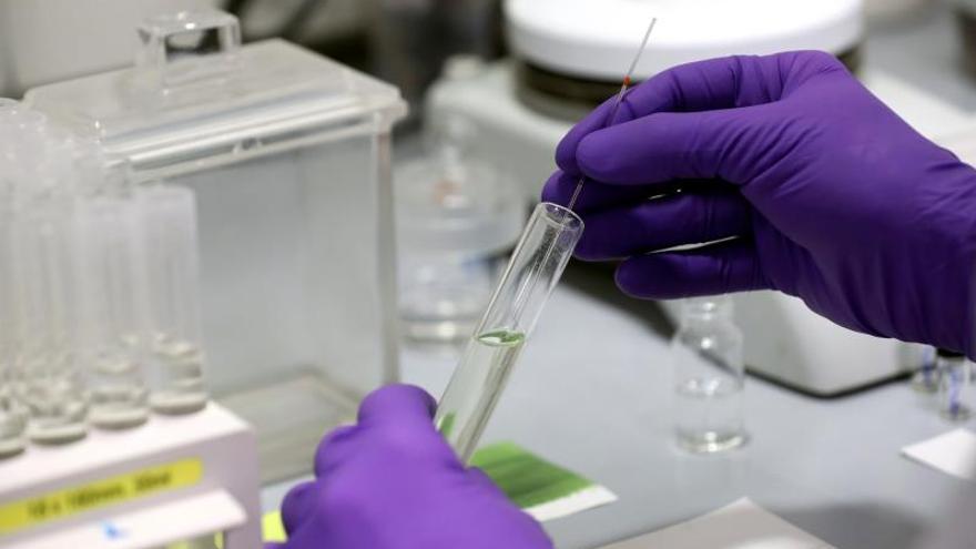 Un ensayo clínico europeo evalúa cuatro tratamientos contra el COVID-19