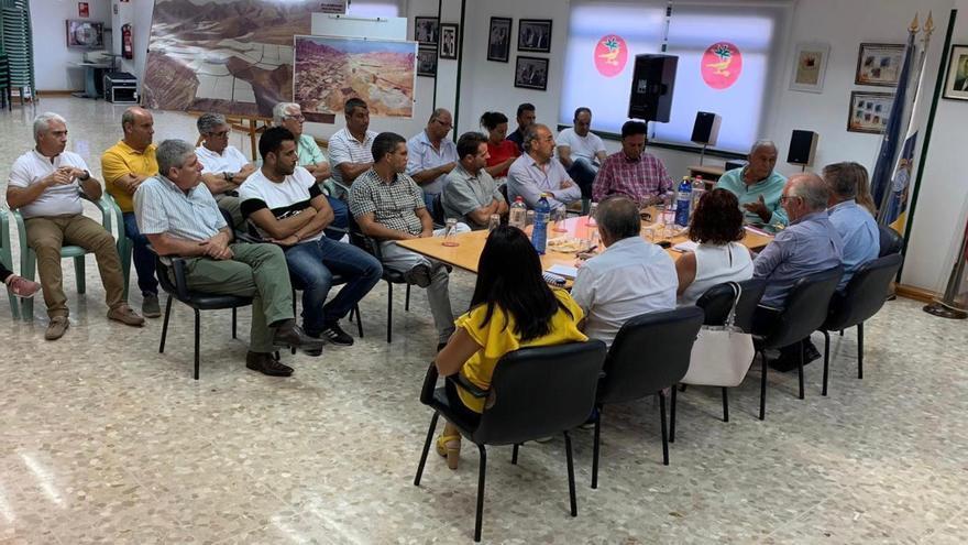 La consejera de Agricultura, Ganadería y Pesca del Gobierno de Canarias, Alicia Vanoostende, durante su visita a La Aldea de San Nicolás.
