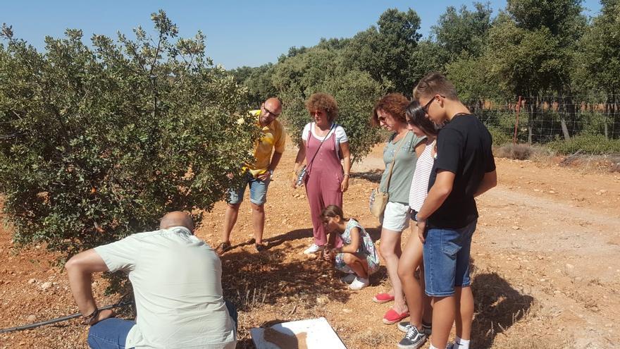 ¿Qué le falla a Castilla-La Mancha para mejorar su posición turística como región destino?