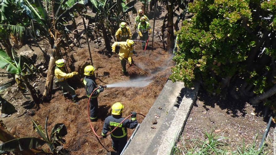 En la imagen, bomberos de La Palma y personal de Medio Ambiente apagando el conato registrado en una finca de El Planto. Foto: BOMBEROS LA PALMA.