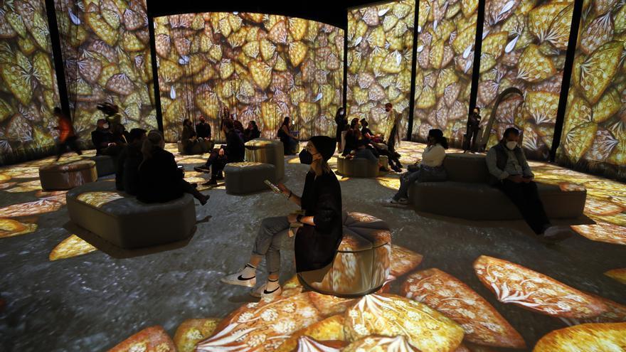 Barcelona dedicará en noviembre una exposición inmersiva a Frida Kahlo