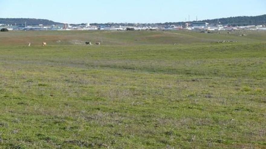 Los terrenos donde se construirá, y al fondo el polígono industrial Capellanías / Gobex