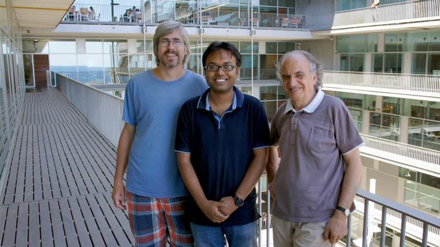Descubren un nuevo antepasado de los humanos que dejó su ADN en islas Andamán