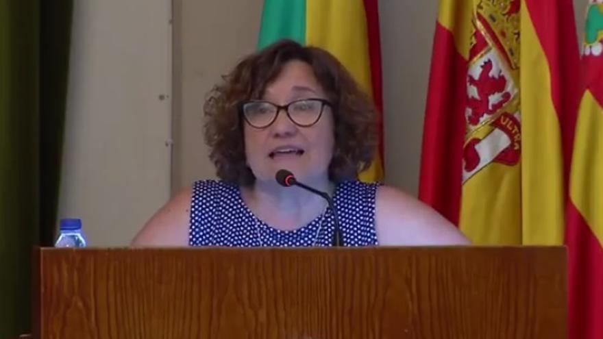 Ali Brancal, concejal de Vivienda y vicealcaldesa de Castellón,en un Pleno.
