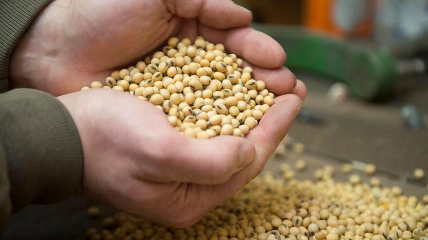 China anuncia la suspensión de la compra de productos agrícolas de EE.UU.