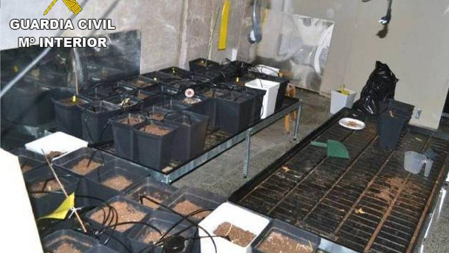 La Guardia Civil concluye con 11 detenidos una operación sobre turismo cannábico