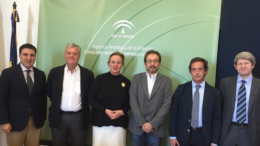 El consejero de Energía del Cabildo de Gran Canaria, Raúl García Brink, junto a miembros de la Agencia Andaluza de Energía.