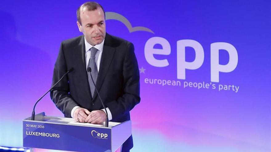 Weber, reelegido presidente del grupo de PPE y, González Pons, vicepresidente