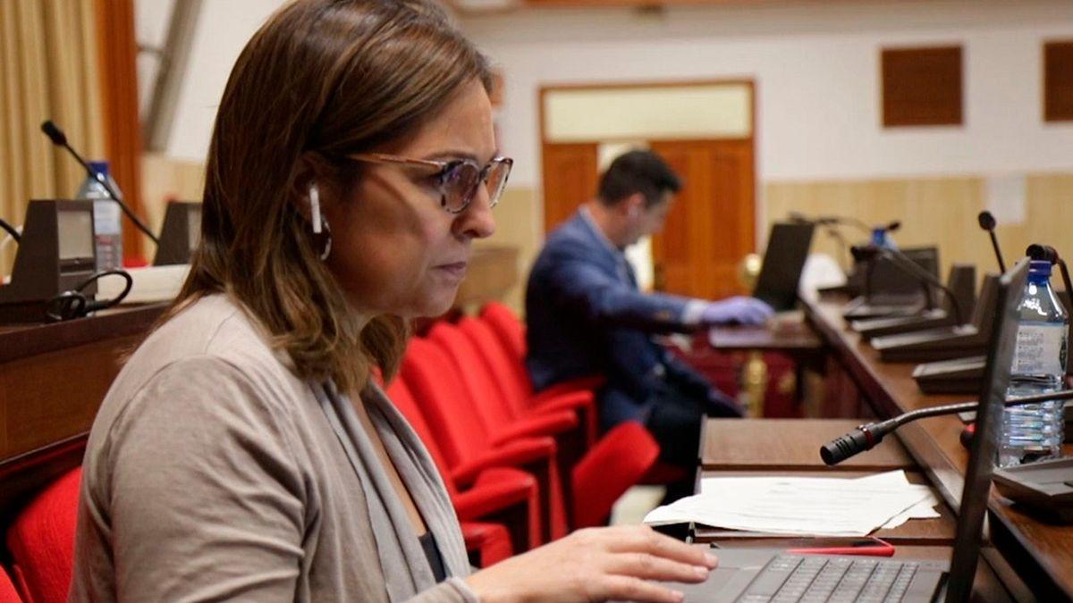 La portavoz del PSOE, Isabel Ambrosio, en el Salón de Plenos del Ayuntamiento.