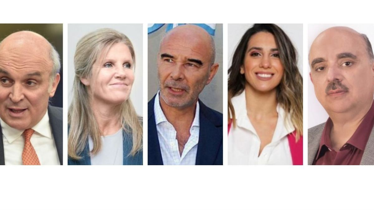 De liberales a conservadores y nacionalistas. Espert, Hotton, Gómez Centurión, Fernández y Biondini, parte de la oferta de la derecha en la Provincia de Buenos Aires.