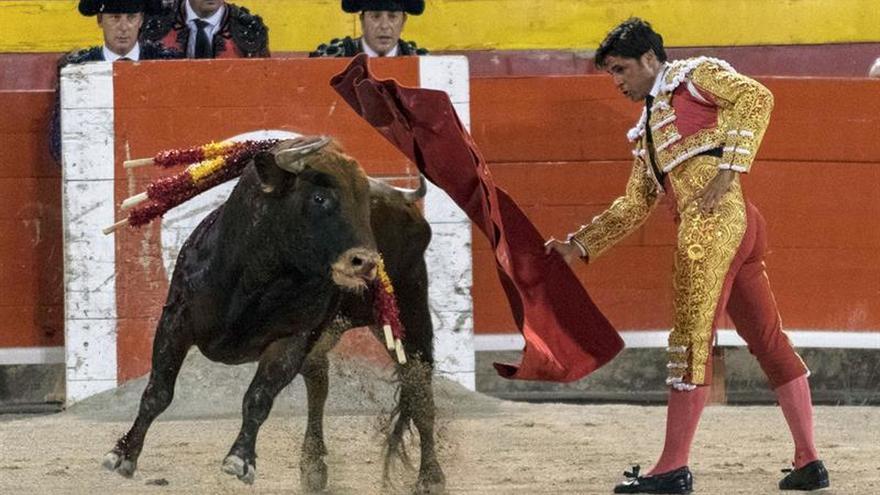 El Constitucional suspende ley balear que prohíbe matar toros en las corridas
