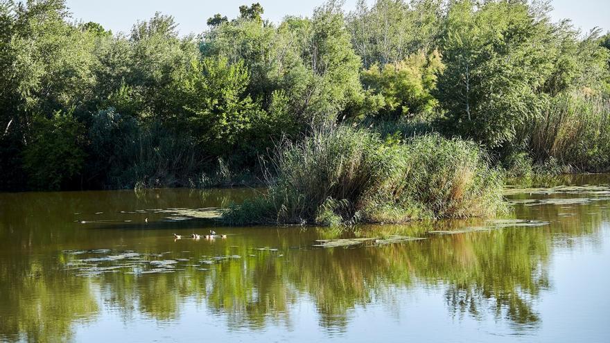 Los alrededores del Río Tajo a su paso por Talaverade la Reina.