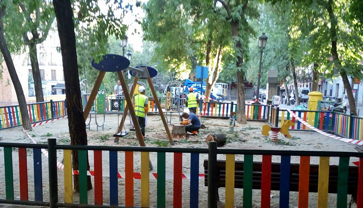 Restos del árbol serrado en el parque infantil | L.L.