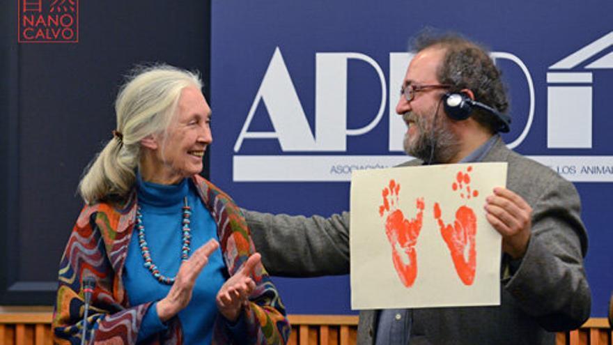 El diputado Chesús Yuste entregando a la primatóloga Jane Goodall el Premio Internacional APDDA. Foto: Nano Calvo