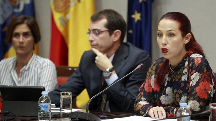 La vicepresidenta y consejera de Empleo, Políticas Sociales y Vivienda del Gobierno de Canarias, Patricia Hernández, comparece en comisión parlamentaria para explicar los presupuestos de su departamento para el año 2016. (EFE/CRISTÓBAL GARCÍA)