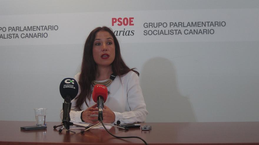 Patricia Hernández, diputada autonómica y exvicepresidenta del Gobierno regional