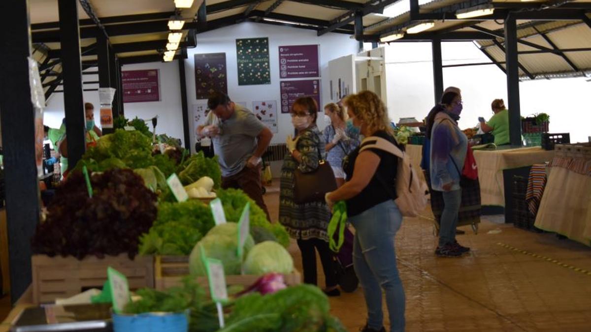 Mercado del Agricultor de Candelaria.