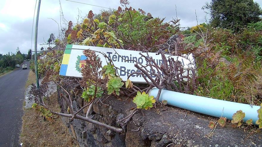 Imagen facilitada de NC de una cartel de Breña Baja casi tapado por la vegetación
