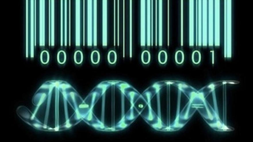 Estudio Sobre Mutaciones Genéticas En Pacientes Con ELA