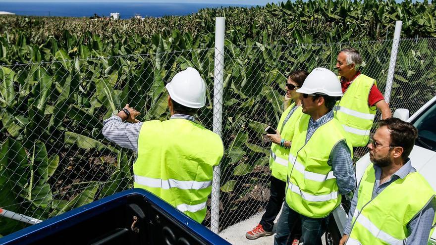 La superficie sobre la que se actúa  con la obra de mejora del riego es de 156 hectáreas de cultivos, principalmente, de plátano.
