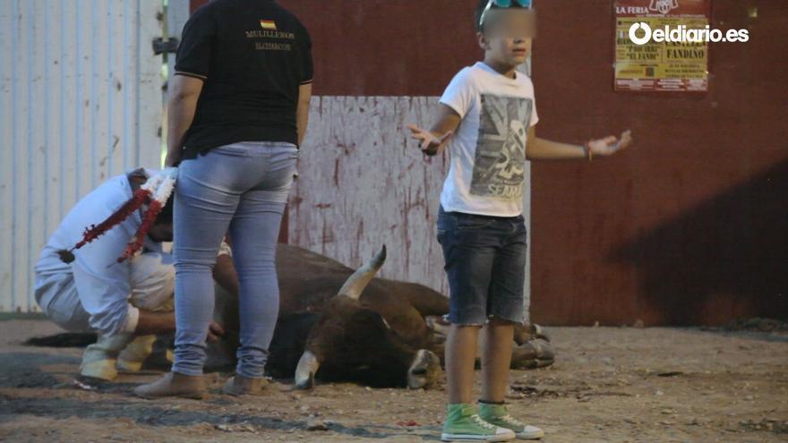 Fotograma del vídeo realizado por El caballo de Nietzsche con motivo de la instancia a España del Comité de los Derechos del Niño de la ONU, en febrero de 2018. Imágenes sobre tauromaquia del videoperiodista Jaime Alekos