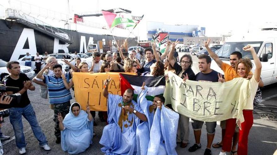 De la llegada de los activistas #12