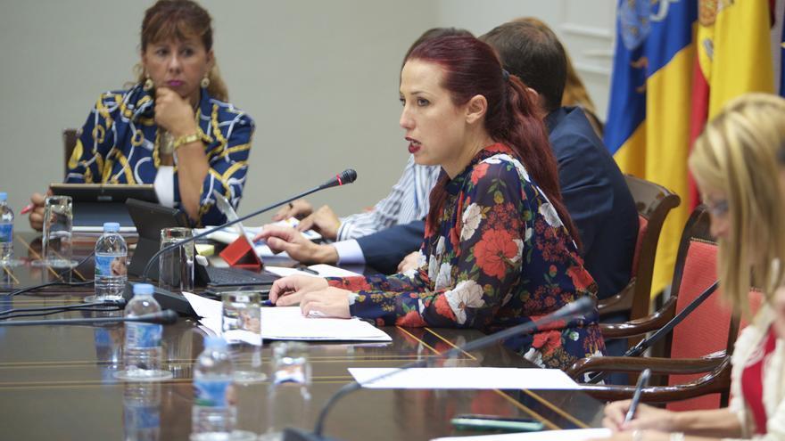 Patricia Hernández en la comisión de presupuestos (GOBIERNO DE CANARIAS)