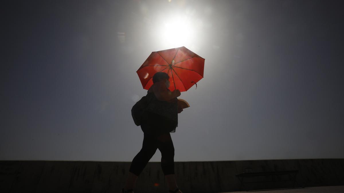 Una mujer camina resguardándose del sol con una sombrilla, el 12 de agosto de 2021 en Córdoba. EFE/Salas