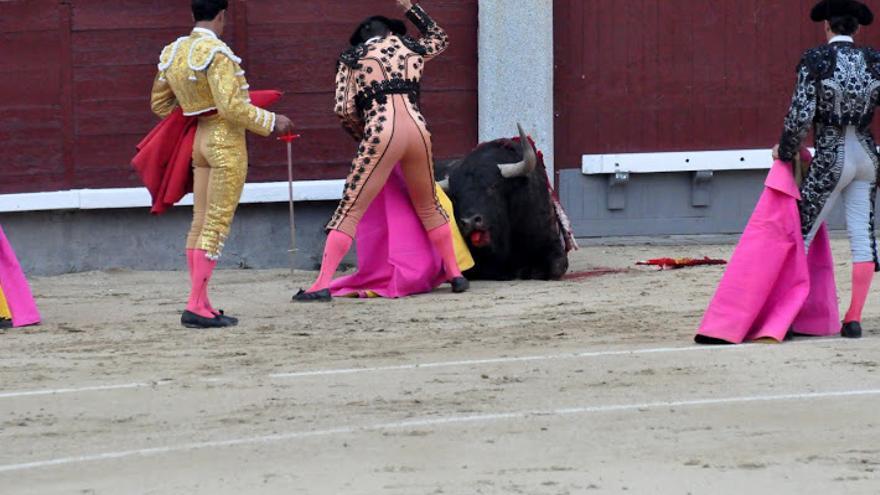 Corrida de toros en Las Ventas. Foto: AVATMA