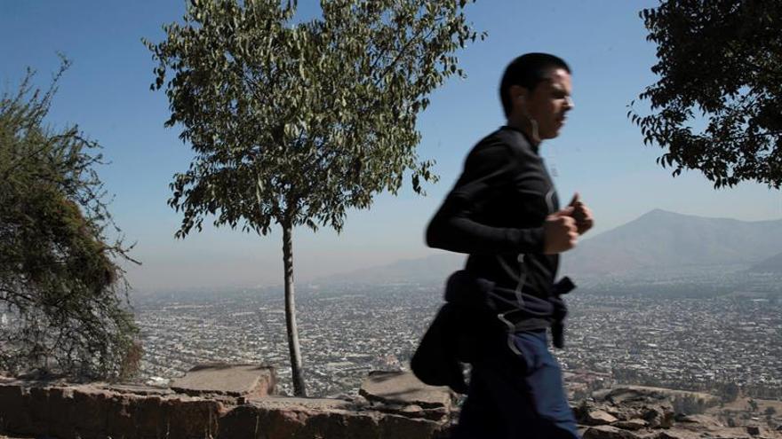 """La """"cultura de la leña"""" debe acabar en el sur de Chile para bajar contaminación"""