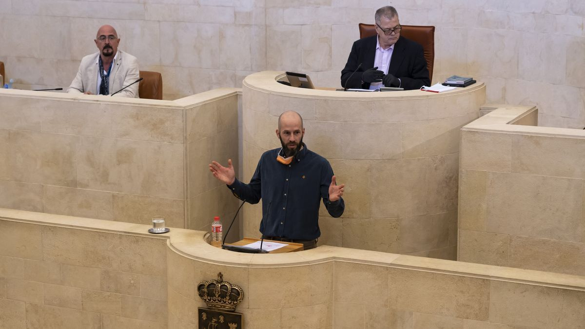 Comparecencia de Reinhard Wallmann en el Parlamento de Cantabria en mayo.