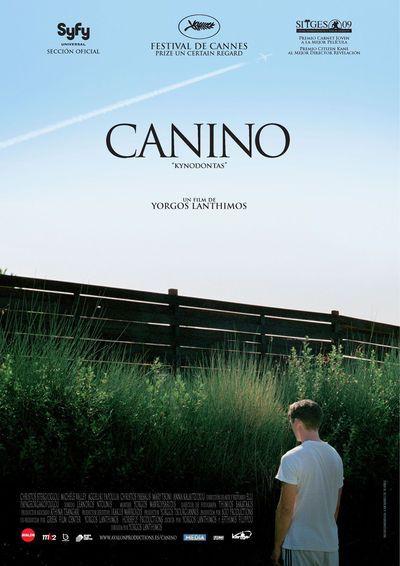 2016-9-15-canino-en-madrid