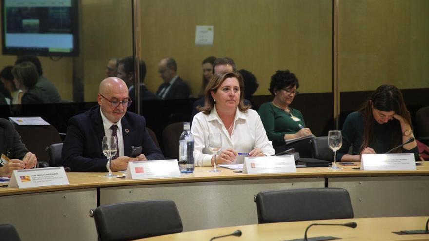 Rosa Ana Rodríguez, consejera de Castilla-La Mancha, en el Consejo de Política Científica, Tecnológica y de Innovación