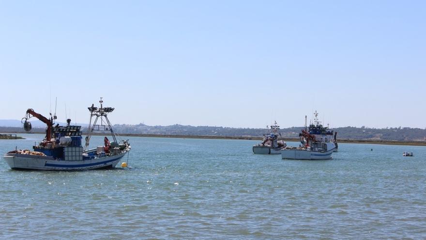 El Gobierno mejora condiciones de trabajo del sector pesquero con la formalización del contrato por escrito