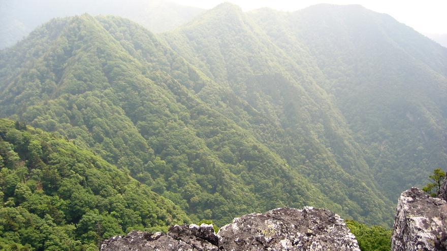Monte Omine en Japón