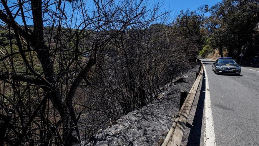 Un vehículo de la Policía Local recorre una de las vías afectadas por el incendio de la cumbre de Gran Canaria.