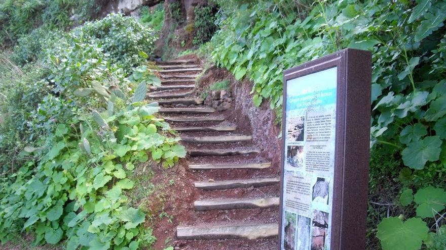 En la imagen, un tramo del sendero circular Las Tricias-Buracas