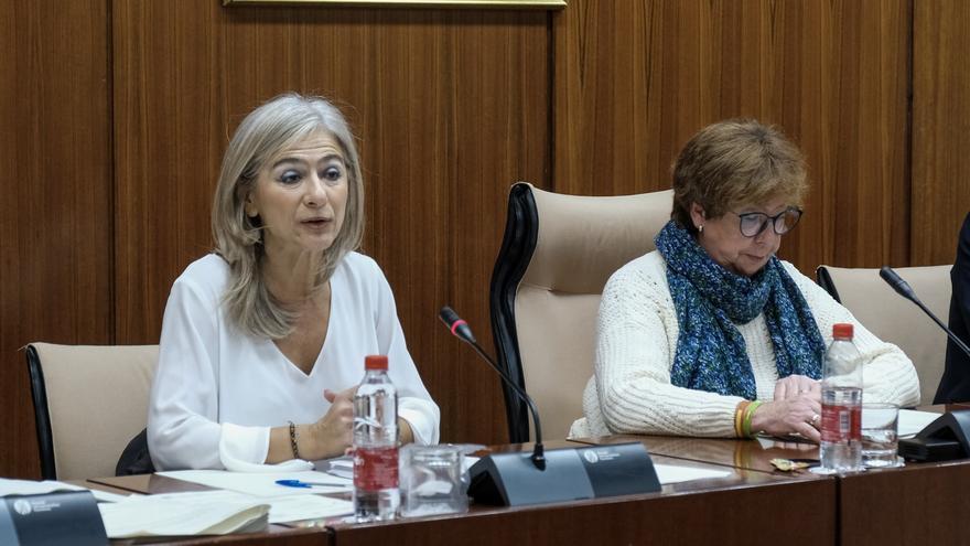 La consejera de Cultura, Patricia del Pozo, junto a la diputada de Vox y presidenta de la Comisión de Cultura en el Parlamento andaluz, Ana Gil Román.