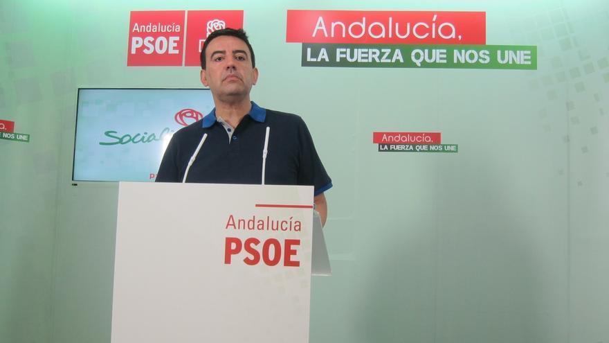 """Jiménez (PSOE-A) señala que Podemos """"enseña su cara"""" de """"izquierda radical"""" con la suma de Gordillo y Cañamero"""