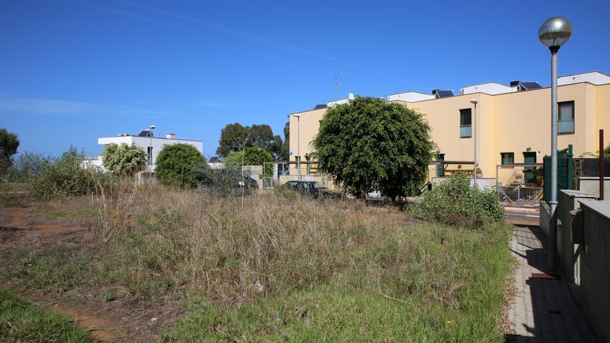 Zona descuidada en luna zona común de la urbanización Los Llanos de la Cruz, en Firgas (Gran Canaria)