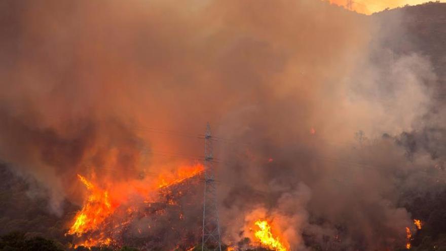 Sigue activo el incendio de Estepona, que obliga al realojo de 144 personas