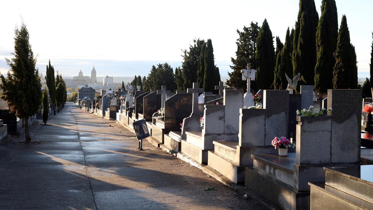 Vista general del cementerio de Salamanca.