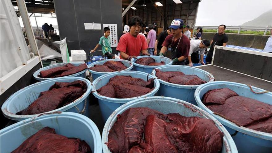 Japón pescó este año menos ballenas en su costa noreste