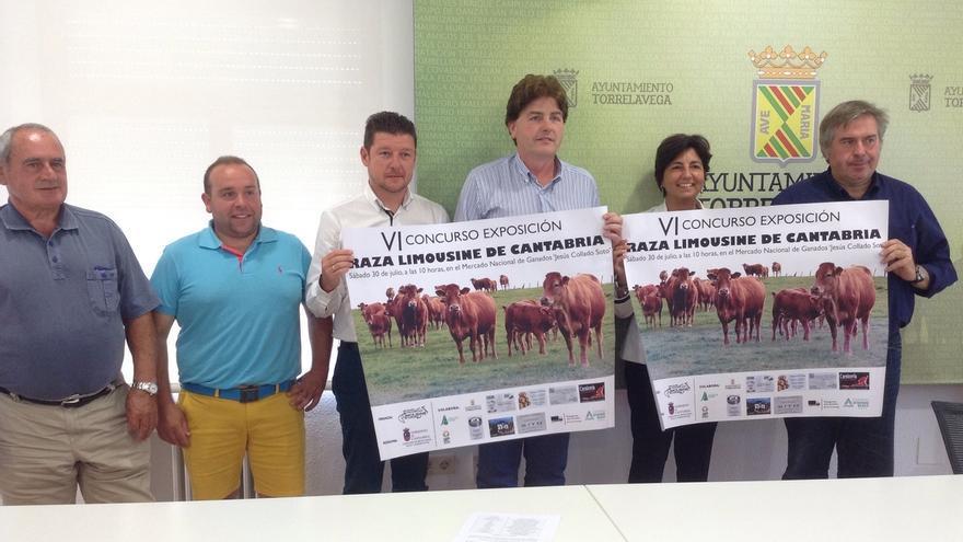 Unos 125 animales de 22 ganaderías participarán en el VI Concurso Exposición Raza Limousine de Cantabria